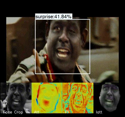 FERAtt: Facial Expression Recognition with Attention Net