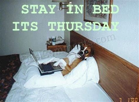 Stay In Bed Its Thursday - DesiComments